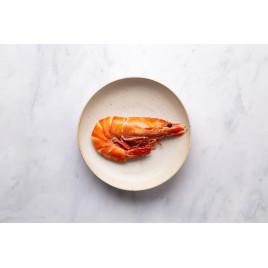 Crevette sauvage