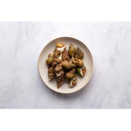 Bulots cuits (100 gr.)